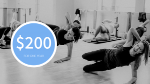 Launch at the barre membership image